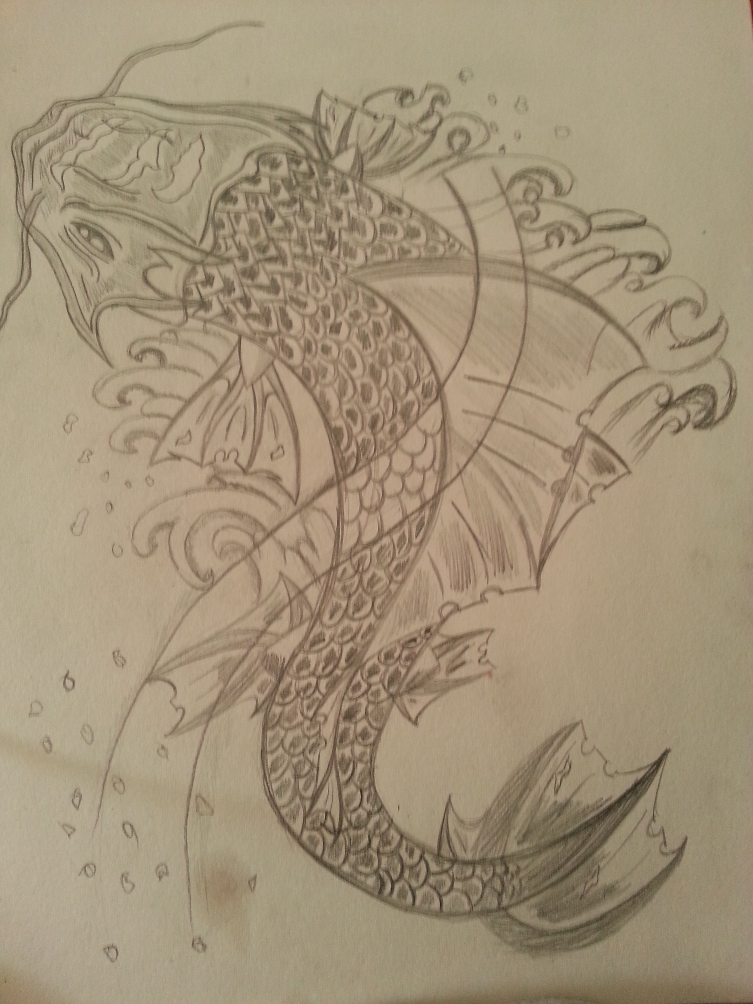 Koi fish sketch 8 good koi fish drawings biological for Koi fish net