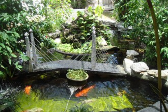 Koi Fish Pond , 6 Nice Koi Fish Pond Kits In pisces Category