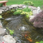 Koi Pond Aeration , 6 Nice Koi Fish Pond Kits In pisces Category