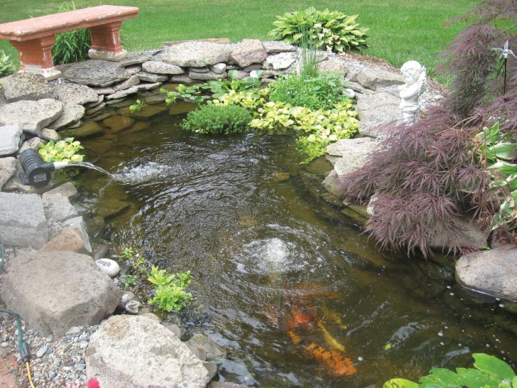 pisces , 6 Nice Koi Fish Pond Kits : Koi Pond Aeration
