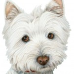 Cute Westie Dog Art Digital Art , 7 Amazing Art Pictures Of Dogs In Dog Category