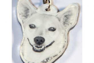 Face Personalized Pet ID Tag in Plants