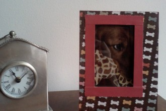 Hand Decorated Picture Frame , 4 Gorgeous Dog Themed Picture Frames In Dog Category