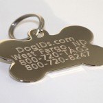 Personalized Dog Tag Information , 8 Amazing Personalized Dog Tags With Pictures In Dog Category