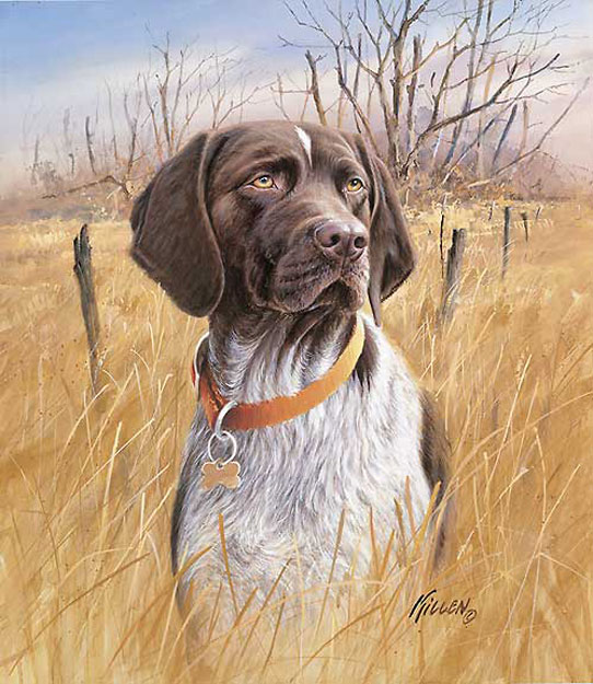 Dog , 7 Amazing Art Pictures Of Dogs : Some Art Pictures Of Dog