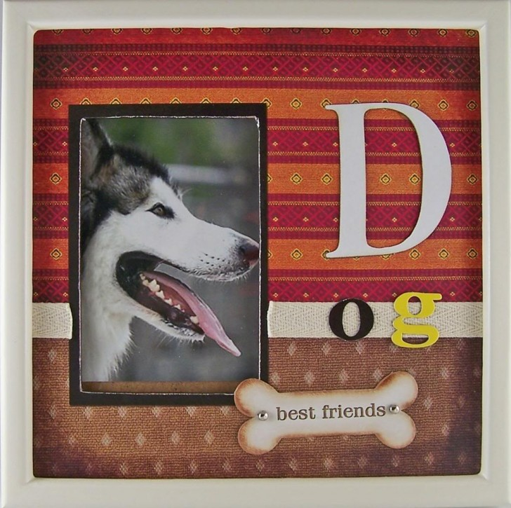 Dog , 4 Gorgeous Dog Themed Picture Frames :  Service Dog Vests For Sale