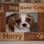 unique picture frames , 5 Fabulous Cute Dog Picture Frames In Dog Category