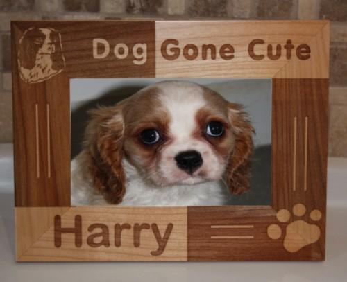 Dog , 5 Fabulous Cute Dog Picture Frames :  Unique Picture Frames